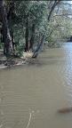 Spring Flood 2013